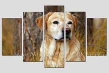 Unframed 5piece Lovely French Bulldpg Puppy livingroom Backdrop cuadros Canvas modular Painting Photos Dog Lovers Top Fashion