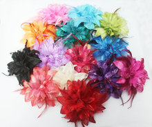 hair clip Newest Fashion Party Hair band Feather hairpin Brooch headwear Fascinator BD005
