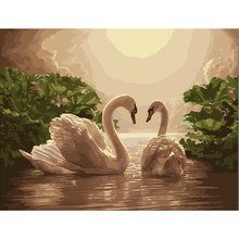 Lake swan picture Diy painting by numbers hand painted canvas oil paintings living room wall canvas art decoration(China)