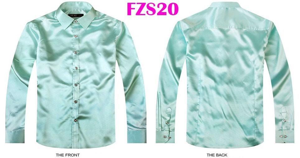 FZS20