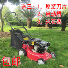 6 20 4-stroke gasoline lawn mower grases lawn mower(China)