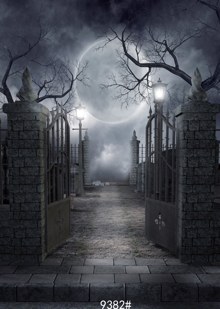 Halloween photo backdrops moon at night Road outside    gate background halloween fond studio photo vinyle background photograph<br><br>Aliexpress