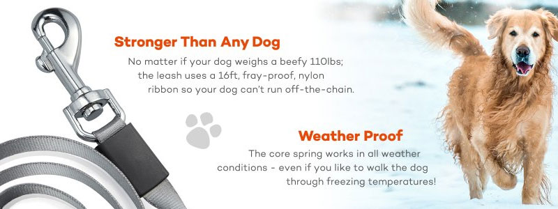 weather proof dog leash