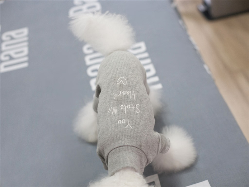 puppy dog clothes winter (12)