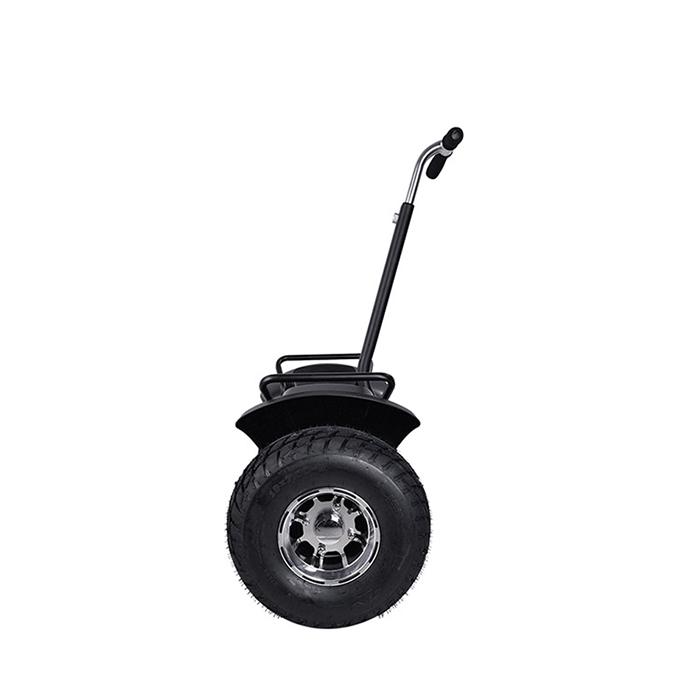 self balance electric chariot (5)