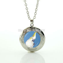 Leisure series essential style jewelry wonderful white parrot locket pendant brightly colored art picture necklace N 1023