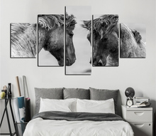 Free shipping Black and white film fine horse animal prints on canvas painting effect decorates kitchen household artwork FA156(China)