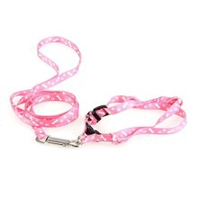 Best Selling Pet Dog Puppy Cat Kitty Nylon Harness Leash Lead Embroidery(China)