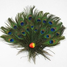 New 20Pcs/packNatural Peacock Tail Feather 8-12Inch Bouquet Milliner Craft Supplies