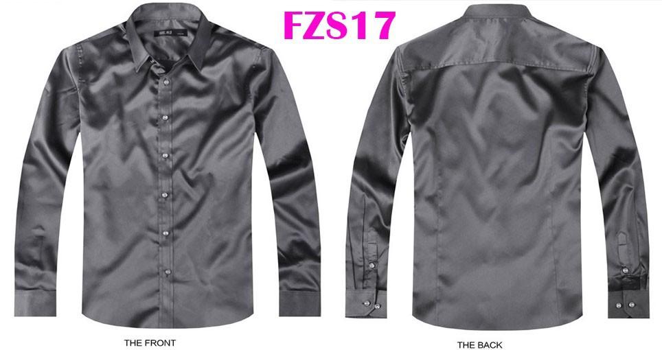 FZS17