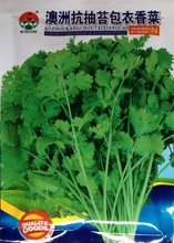 1 original bag Australia Bolting resistance coriander coated seeds, 40g 3500+ Spring, Summer, Autumn can grow spice parsley seed