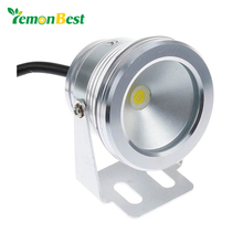10W LED Swimming Pool Light Underwater Waterproof IP65 Landscape Lamp Warm/Cold White AC/DC 12V 900LM(China)