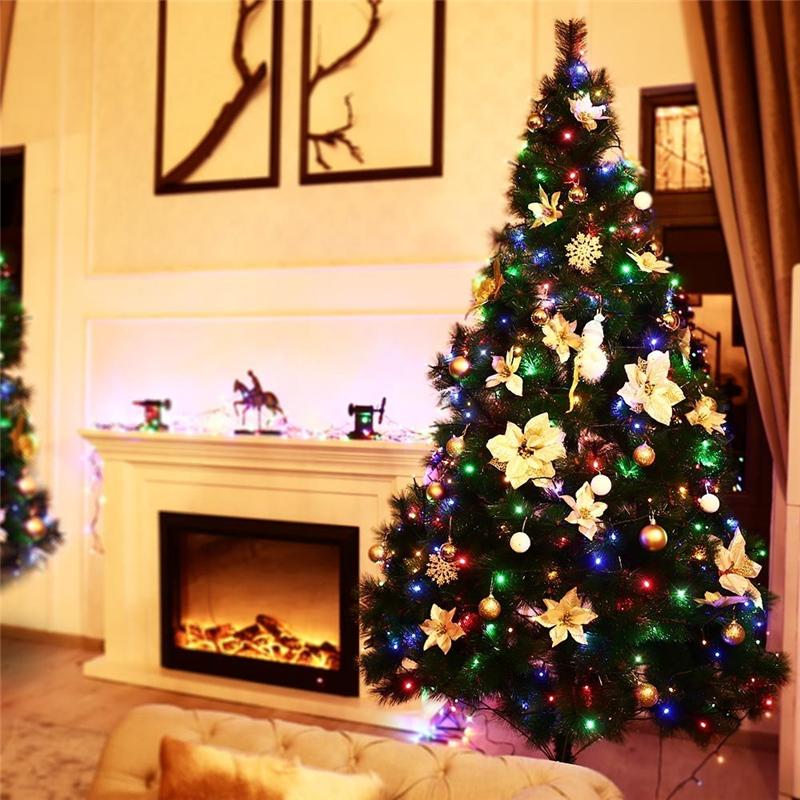 Dimmable LED Christmas Lights (10)