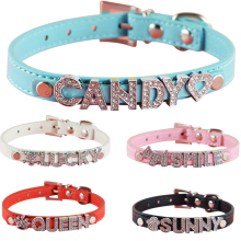 Pu Leather 10MM Letters Charms Sliders Personalized Dog Pet Name Collar and Matched Lead Leashes
