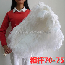 10 PCS natural white ostrich feather 70-75 cm / 28 to 30 inches feathers ostrich plume wedding decoration free shipping(China)
