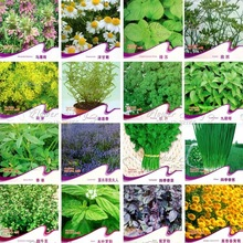 16 KINDS practical Herb Seeds,Chamomile,Cumin,Dill,Rosemary,Parsley,Lavender,Coriander,Chive,Basil