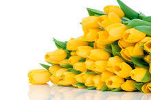 Bonsai flower seeds. Blooming yellow tulip bulbs -10PC / bag (not the tulip seeds)