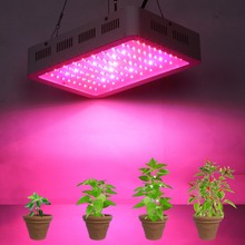 Best Full Spectrum 300W led grow light for hydroponics greenhouse Grow Tent box LED Lamp suitable for all stages of plant growth(China)