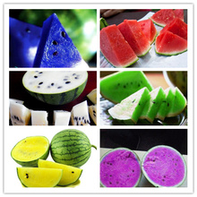 2017 Hot sale Watermelon seeds 50pcs fruit vegetable seeds Garden Home plant Blue Yellow Green Watermelon Free shipping