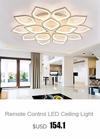Living Room Ceiling Lamp (1)