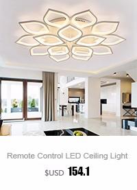 Living Room Ceiling Lamp (1)