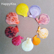 HappyKiss 30pcs /lot Natural seashells crafts shells To stick The wedding party colors conch(China)