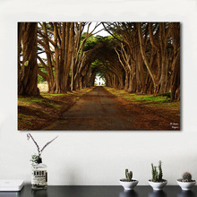 QCART Landscape Picture Home Decor Living Room Painting Modern Canvas Print Wall Art No Frame(China)