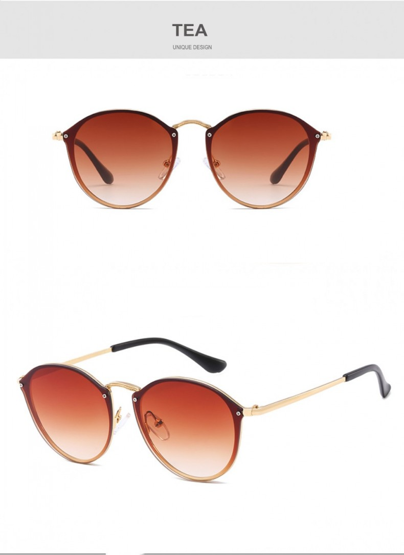 tinted sunglasses (13)