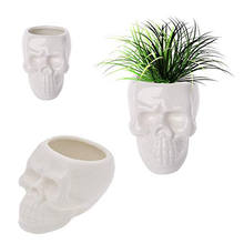 Mini Ceramic Skull Potted Flower Plants Pot Green Succulent Planter Plant Container Pots For Flowers Planters Garden Products(China)