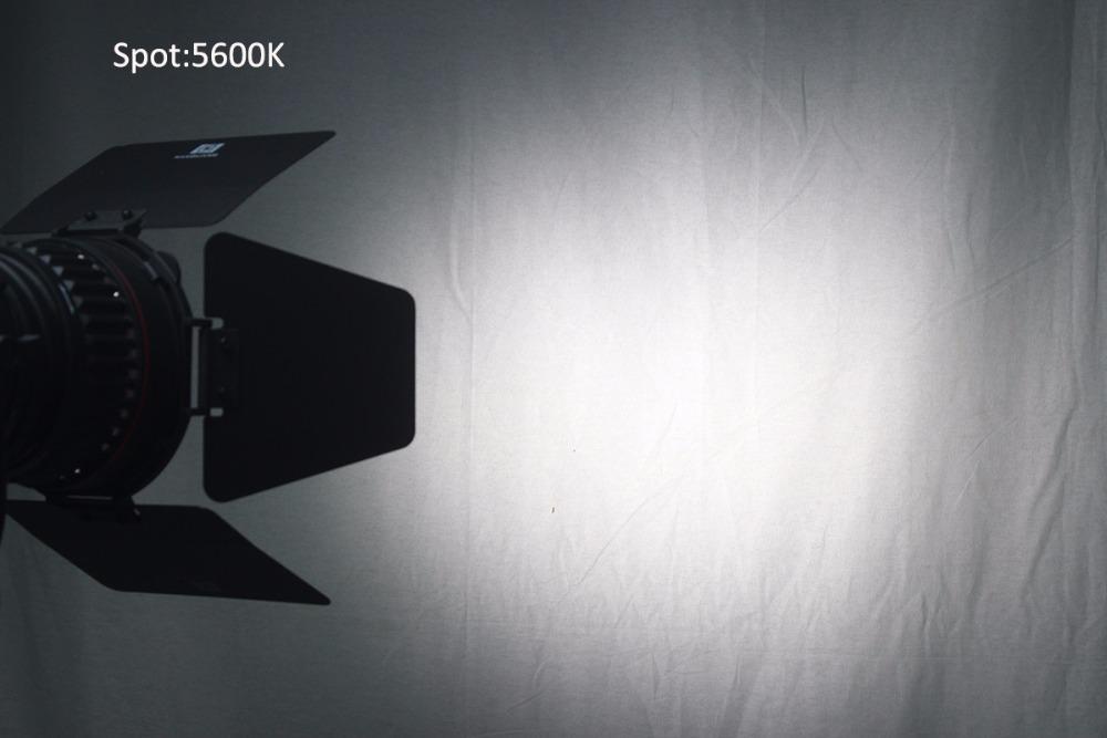 Spot5600K