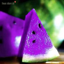 Purple Rare Sweet Watermelon Seeds Potted Fruit Seed Non Gmo Edible Fruits 10 Particles / lot(China)
