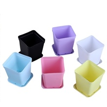7pcs Bonsai Planters Plastic Table Mini Succulents Plant Pots and Plate Gardening Vase Colorful Square Flower Pot(China)