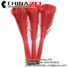 CHINAZP Wholesale Dancer Showgirl Carnival Feathers 500pcs 80~90cm(32~36inch) Red Dyed Long Peacock Feather Party Supplies