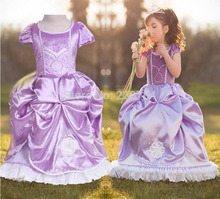 Free Ship Party Girl Dress 2017 Girl Puff Sleeve Purple Birthday Dress Flower Girl Dress The First Princess Sofia Dress Costume