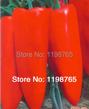 Promotion! 50pcs Super Big Red Hot Pepper Seeds 100% High Quality Paprika Free Shipping(China)