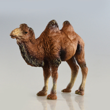 ZAPUYO Brand Starz Wild Animals Toys Camel Action Figures Static PVC Model Early Education Toys for Collection and Kids Gifts