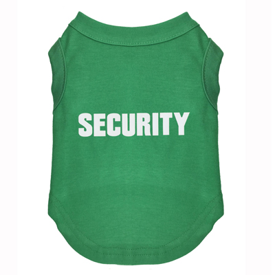 security -1