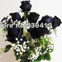 Black Rose Seeds China Rare Amazingly Beautiful Black Rose Popular garden flower 120PCS Seeds +Mysterious Gift(China)