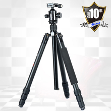 pro Sinno EF-2428Z SLR tripod aluminum tripod monopod head variable Alpenstock 3 in1 wholesale free shipping