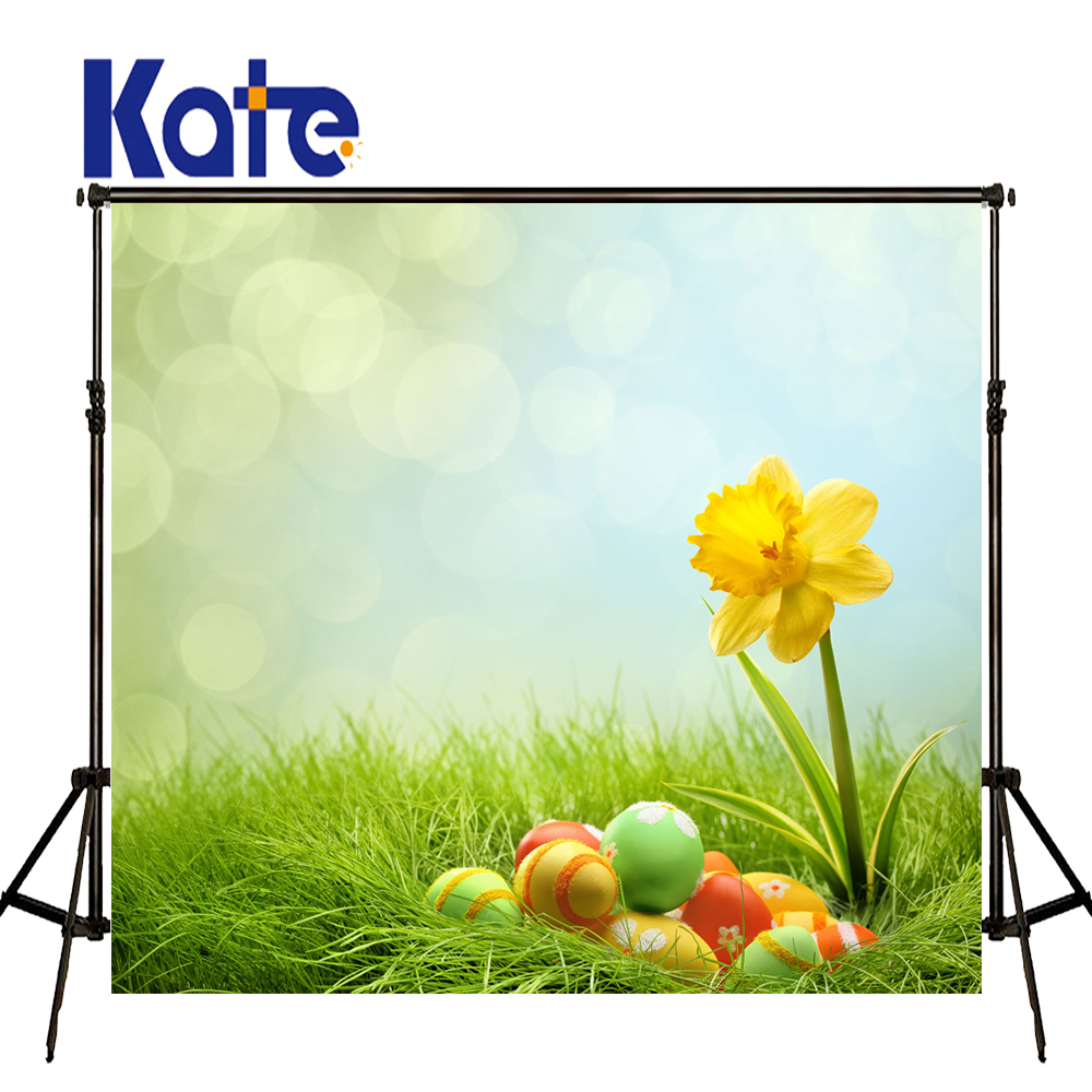 Easter Photography Backdrops Eggs Sunny Grass Photography Easter Sunday Zj<br>