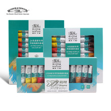 Free shipping Windsor Newton 24 color Acrylic paint  set wall paint colour acrylic paint clothes professional kids art lam