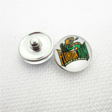 10pcs NCAA Florida A&M Rattlers Snap Buttons Glass 18mm Ginger Sports buttons Diy Snaps Jewelry Bracelet&bangles Charms(China)