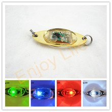 5Pcs*Flash Lamp Deep Drop Underwater Attraction indicator Fishing Electronic Flashing LED Light Fishing Squid Lure Bait Light(China)