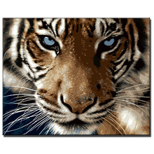 coloring by numbers canvas art Home decoration painting Tiger picture diy painting by numbers hand painted canvas oil paintings