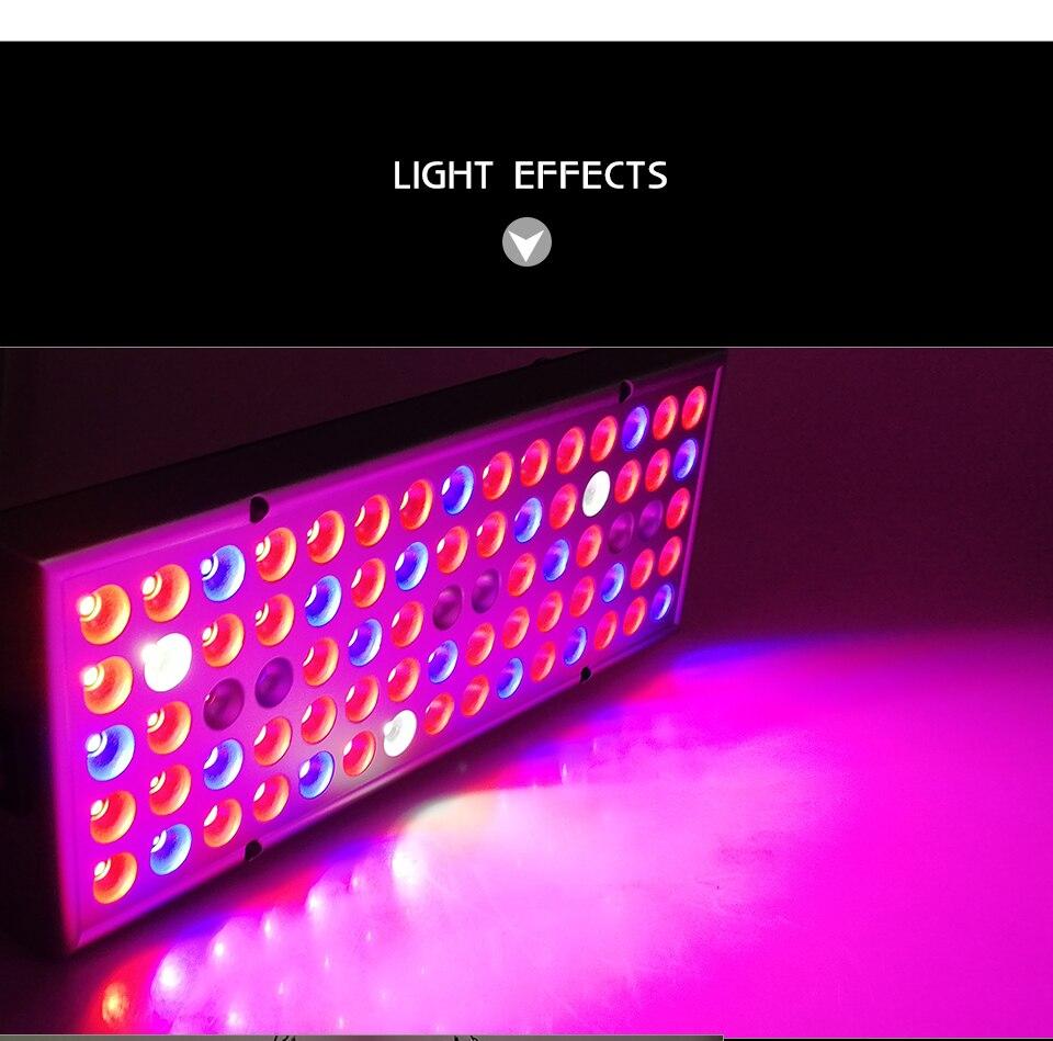 panel led grow light (9)
