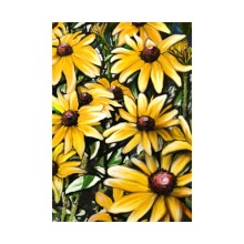 Daisy Garden Flag Decorative Outdoor And Indoor Flags 100% Polyester Beautiful Flowers Designs Pringing Home Yard Banner