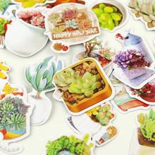Fresh succulent plants sticker notebook diary note book decorative label stickers school Kawaii Adhesive Printer Paper stickers