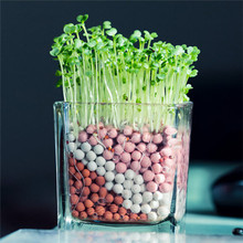 GGG Bonsai heart shaped grass Seeds 500pcs multi-Colored grass Seeds Novel Plant for DIY Garden Free Shipping(China)