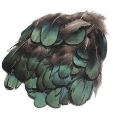 50pcs/set Beautiful Natural Green Pheasant Feathers For Crafts Millinery Embellishments DIY Handmake Arts Material Accessories(China)