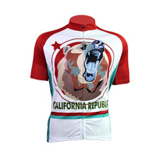 2017 men youth cycling jersey pro team mtb bear jersey de la ropa ciclismo cycling clothing white maillot ciclismo bicycle wear(China)